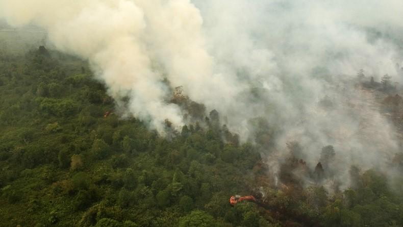 Kebakaran Hutan dan Lahan Picu Penderita ISPA di Sumsel Capai 274.502 Orang