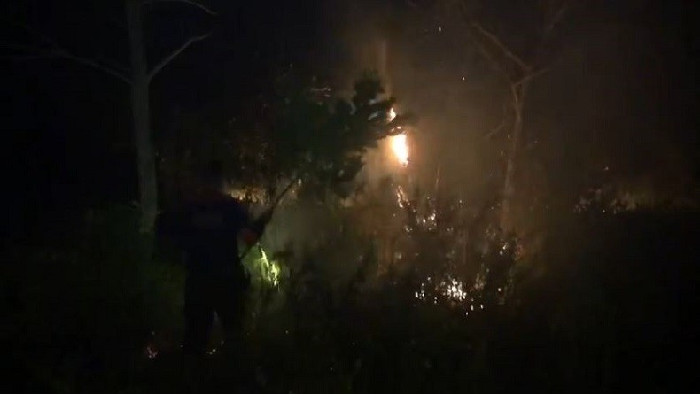 Kabut Asap Karhutla Belum Teratasi, Kepala Daerah Se-Kalteng Dilarang Bepergian