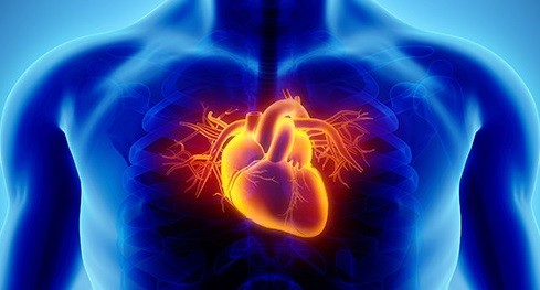 Pertama Kali di Luar AS, RS di Malaysia Sukses Tanam Alat Pacu Jantung Terkecil