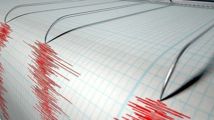 BMKG: 1.044 Gempa Susulan Guncang Maluku, 114 di Antaranya Dirasakan Warga
