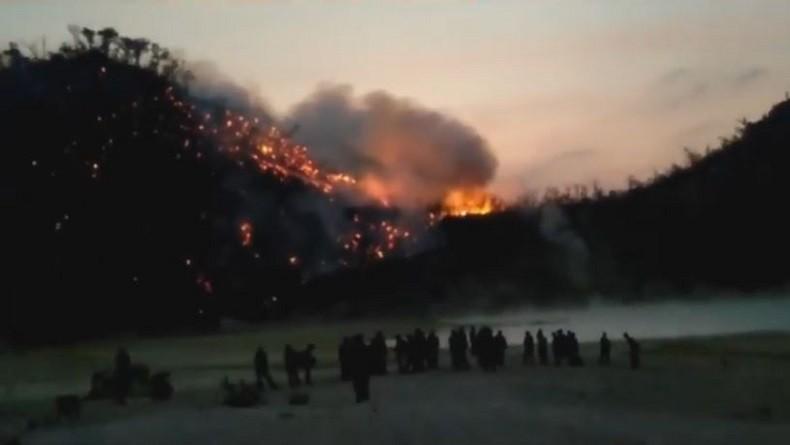 Kebakaran Hutan di Kawah Putih Ciwidey, Petugas Padamkan Api secara Manual dan Alat Seadanya
