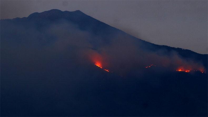 Hutan Gunung Arjuno Malang Kembali Terbakar, Relawan Kesulitan Padamkan Api