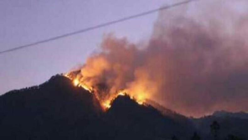 Kebakaran Gunung Arjuno Meluas, Pemprov Jatim Minta Bantuan Heli Water Bombing dari BNPB