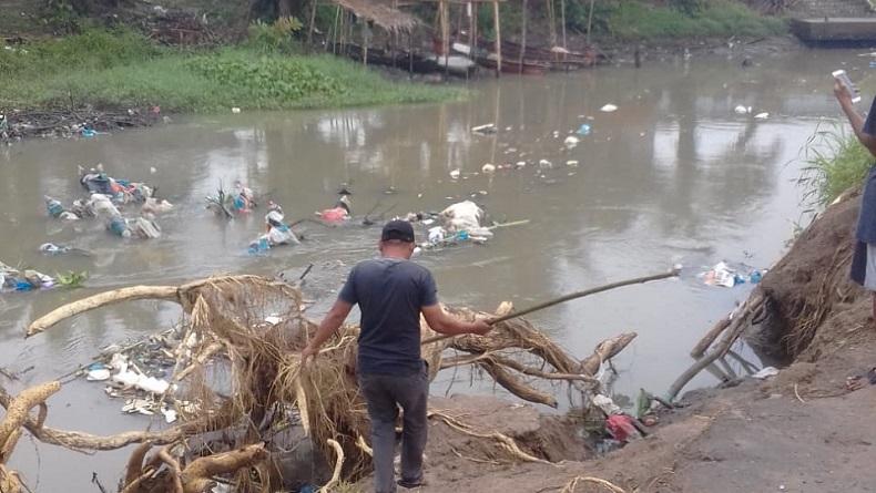 Puluhan Bangkai Babi Kembali Mengambang di Sungai Bederah Medan