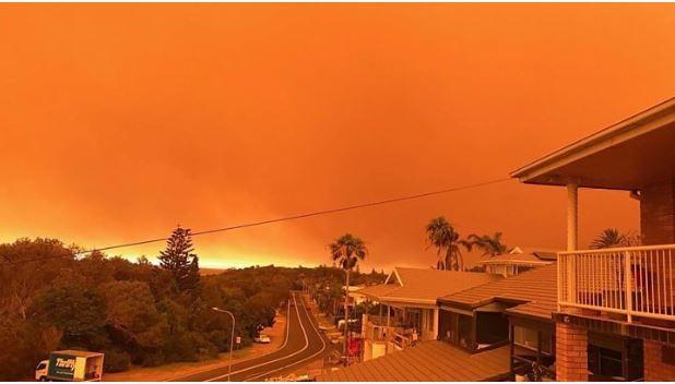 Kawasan Sydney Hadapi Ancaman Kebakaran Hutan Dahsyat, WNI Dipastikan Tak Terdampak