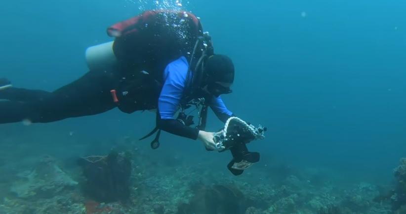 Keren, Algoritma Ini Bisa Menghilangkan Air dari Foto Underwater