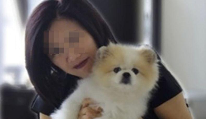 Anjing yang Pernah Dikarantina Virus Korona Mati, Kasus Pertama di Dunia