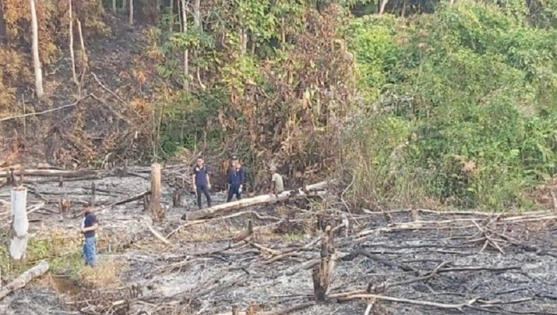 Hutan Lindung di Sikka NTT Terbakar Lagi, Petugas Kesulitan Padamkan Api