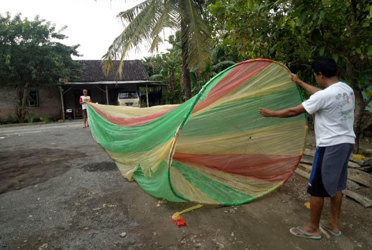 "Balon Raksasa ""Korona Matiyo"" Jatuh di Perkebunan Jati Gunungkidul"