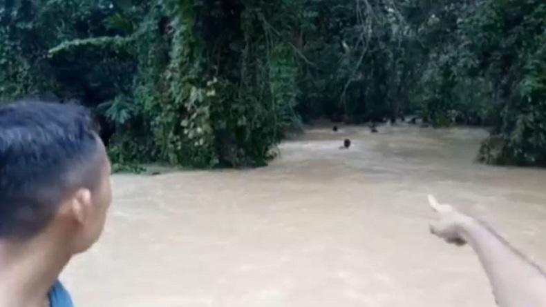 Bayi yang Terseret Banjir di OKU Ditemukan Tersangkut di Akar Pohon