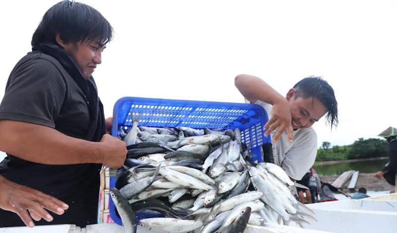 Begini Cara Pemerintah Jaga Investasi Perikanan Tumbuh di Tengah Covid-19