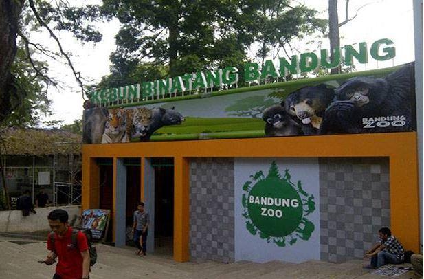 Libur Lebaran 2021, Kebun Binatang Bandung Buka Setiap Hari