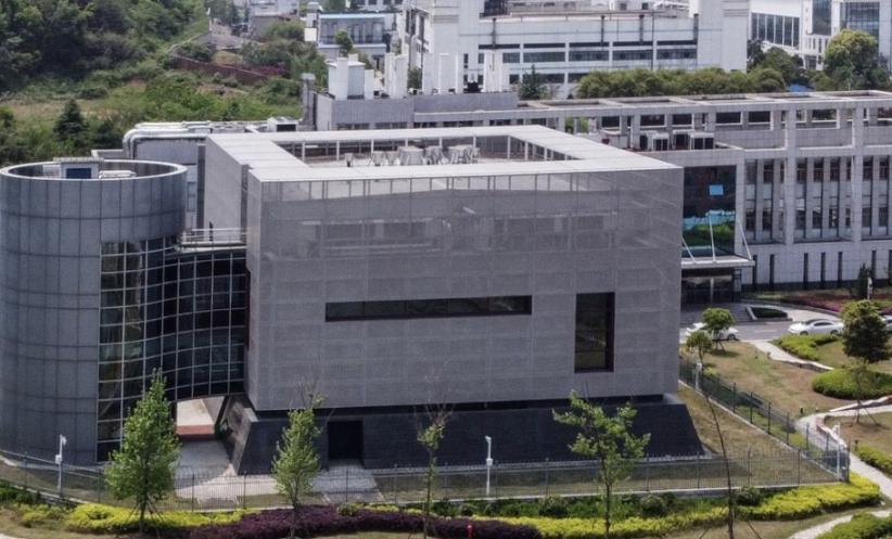 Laporan Ungkap Sampel Mirip Virus Corona Diserahkan ke Lab Wuhan 7 Tahun Lalu