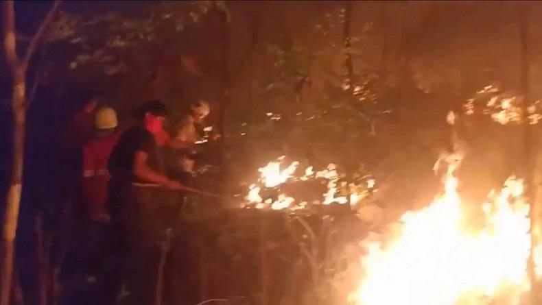 Sudah 300 Ha Lahan Terbakar di Jatim, BPBD Imbau Warga Waspada