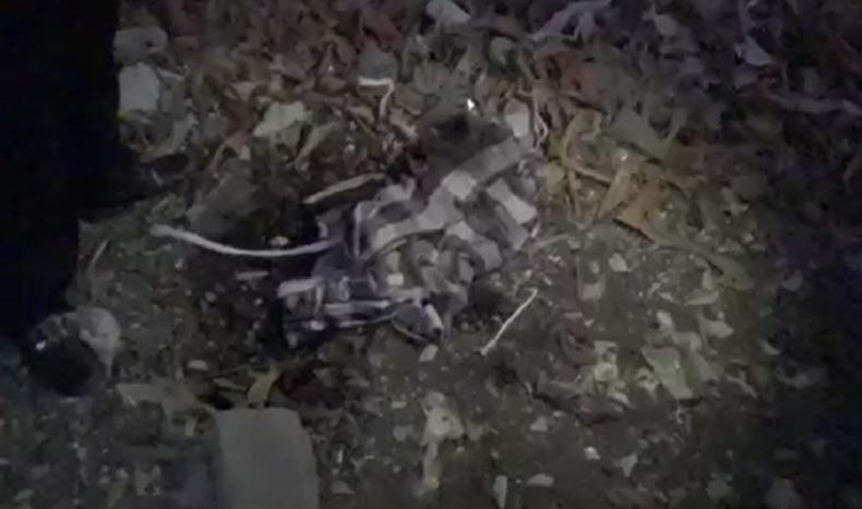 Warga Denpasar Temukan Mayat Bayi Terbungkus Sarung Dikubur di Lahan Kosong