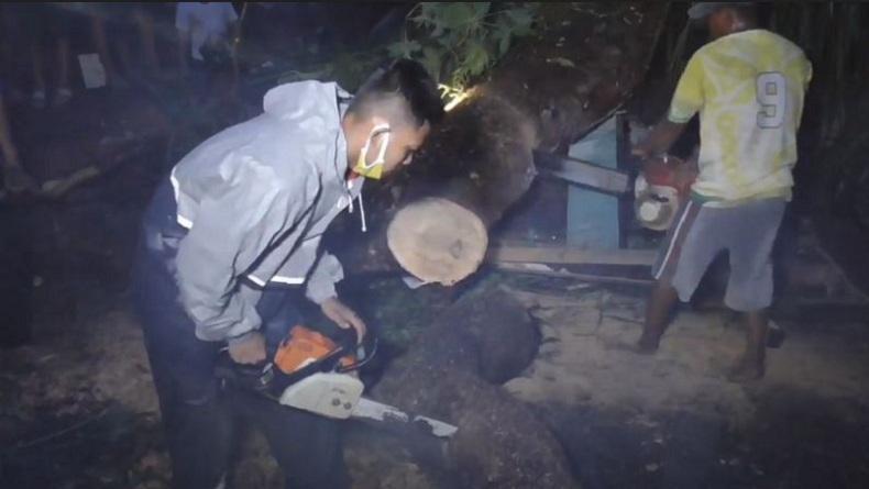 2 Bocah di Medan Tak Sadarkan Diri Tertimpa Pohon Tumbang