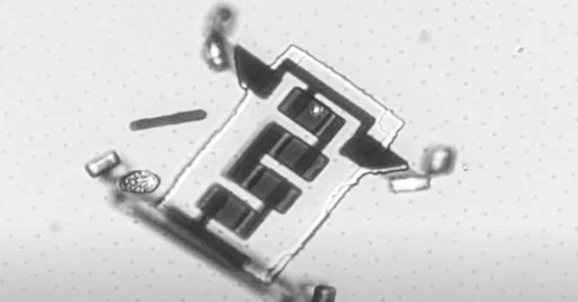 Robot Mikroskopis Bisa Berjalan dalam Tubuh Manusia di Masa Depan