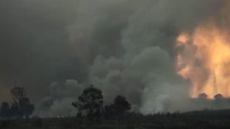 Karhutla Sumsel: 91 Hektare Lahan di Ogan Ilir Hangus Terbakar