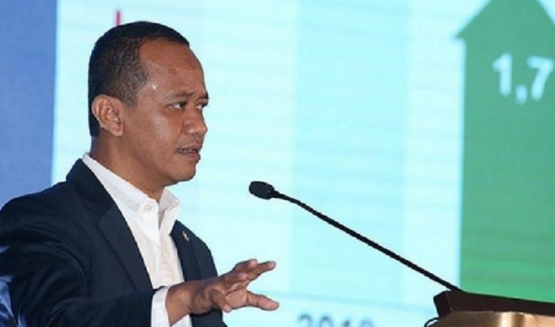 Pemerintah Dorong Maluku sebagai Lumbung Ikan Nasional