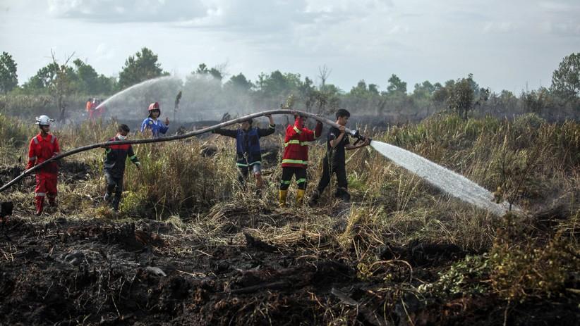 Polisi Padamkan Api di Lahan Sisa Panen Jagung yang Dibakar Warga OKU