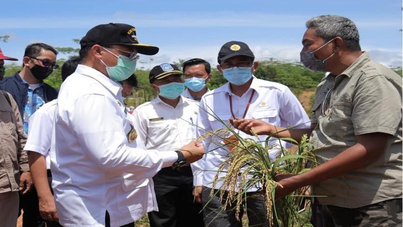 Gubernur Babel Dorong Petani Manfaatkan Tasela
