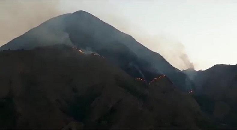 Cuaca Panas, 15 Hektare Padang Savana Lereng Rinjani di Sembalun Lombok Timur Terbakar