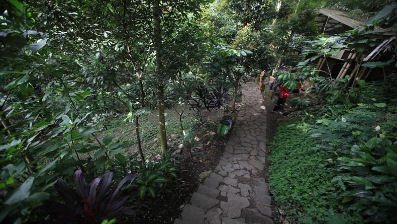 Lingkungan Rusak, Puluhan Mata Air di Kota Bandung Kritis