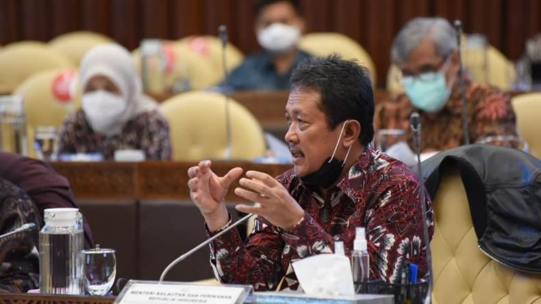 Menteri KKP Sakti Wahyu Trenggono Setop Sementara Ekspor Benih Lobster, DPR: Jangan Tanggung, Cabut Saja