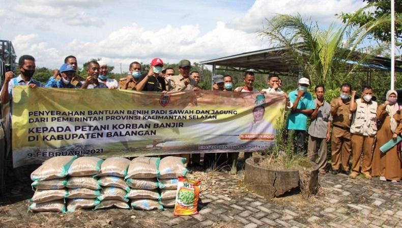 Bantu Petani Terdampak Banjir di Balangan, Pemprov Kalsel Salurkan 5 Ton Benih Padi dan Jagung