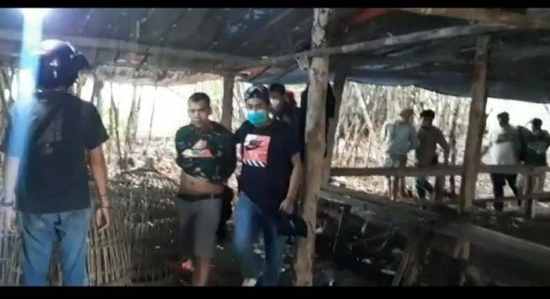 Penggerebekan Arena Judi Sabung Ayam di Tengah Hutan Diwarnai Tembakan Peringatan