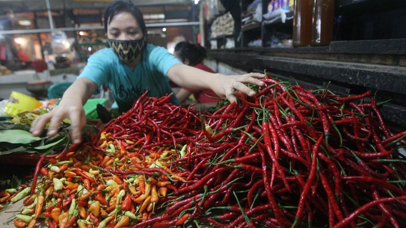 Harga Cabai Turun Jadi Rp15.000 per Kg, Petani di Solok Mengeluh