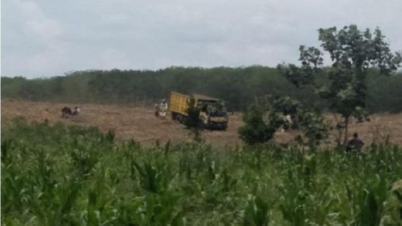Oknum Pejabat Diduga Sewakan Lahan Aset Milik Pemkab Simalungun Seluas 200 Hektare