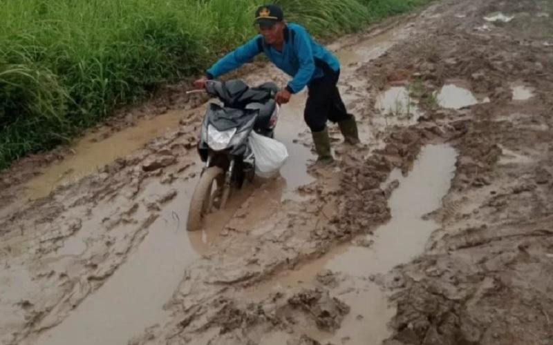 Duh! Jalan Desa di Mesuji Rusak Parah, Becek dan Berlumpur
