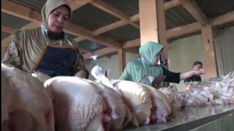 Harga Daging Ayam dan Sapi di Boyolali Meroket Jelang Ramadan