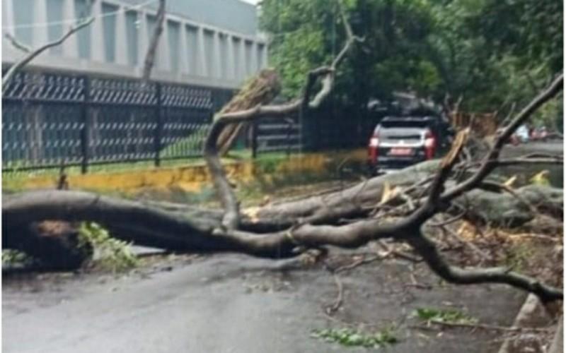 BNPB Sebut Semua Provinsi di Indonesia Miliki Peta Risiko Bencana