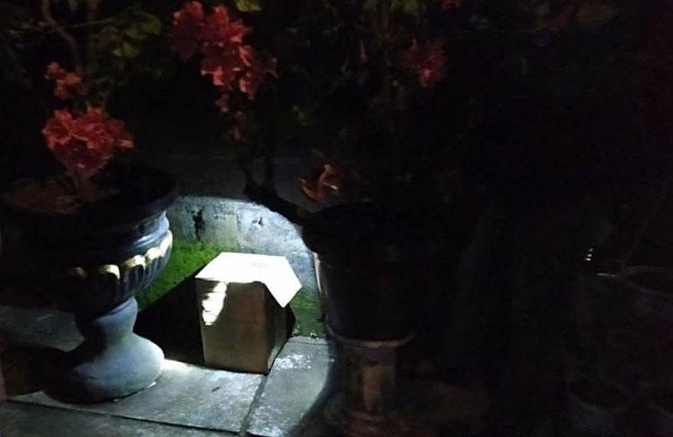 Kelabui Polisi, Pedagang Simpan Miras di Belakang Rumah Ditutupi Pot Bunga