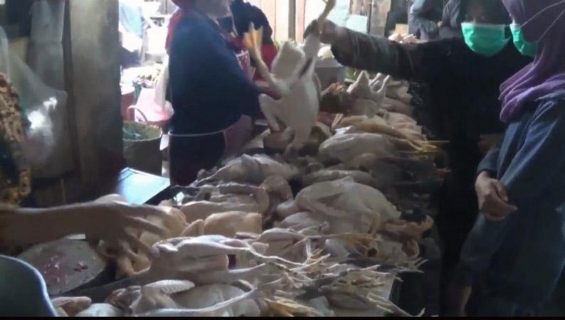 Harga Daging Ayam Kampung di Pasar Kendal Tembus Rp80.000 per Kilogram