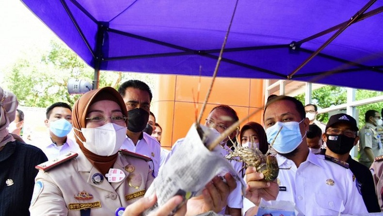 Plt Gubernur Andi Sulaiman Sudirman Lepas 2.000 Ton Komoditi Perikanan