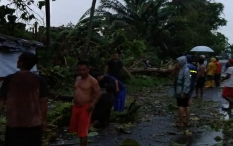 BPBD Sebut Sumsel Berpotensi Diterjang Hujan dan Puting Beliung