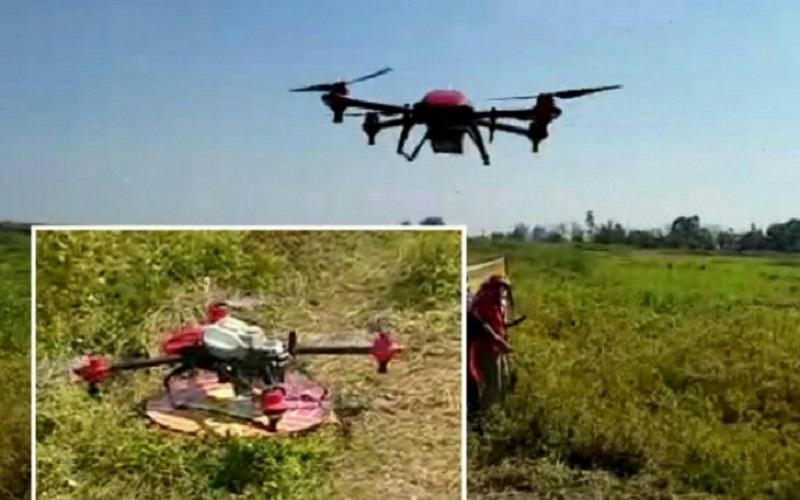 Distan HSU Pertimbangkan Penggunaan Drone Pembasmi Hama di Lahan Pertanian