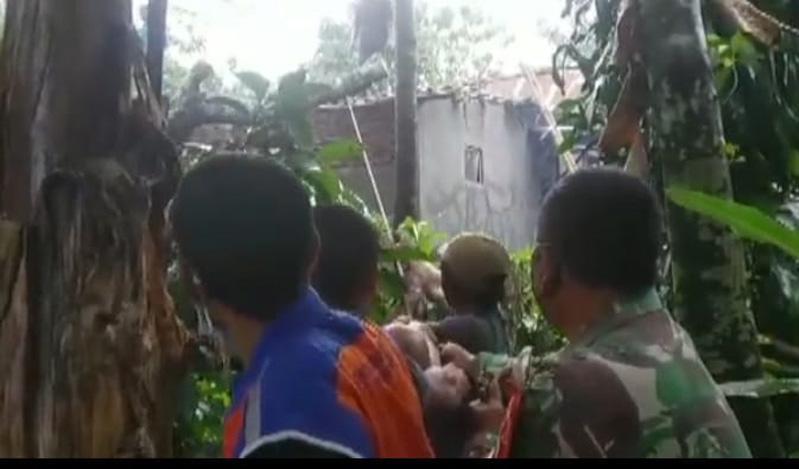 Hujan Badai Landa Banyumas, Pohon di Kebun Mayangsari Tumbang Timpa Rumah Warga