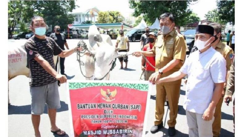 Idul Adha, Gubernur Sulut Olly Dondokambey Serahkan 61 Sapi Kurban ke Sejumlah Masjid