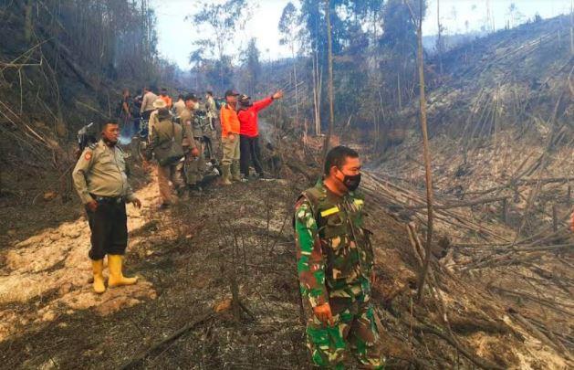 50 Hektare Hutan Lindung Bukit Suligi Rokan Hulu Terbakar, BMKG Temukan 46 Titik