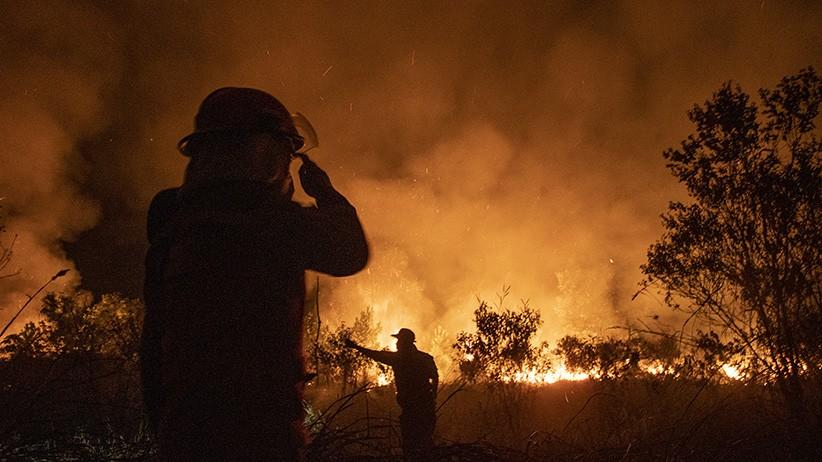 2 Hektare Lahan Gambut di Aceh Barat Terbakar