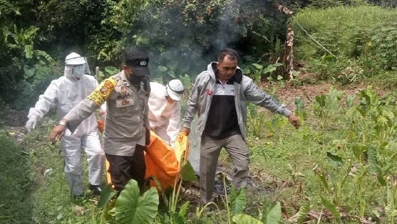 Panen Rambutan Berujung Petaka, Kakek 83 Tahun di Tebingtinggi Tewas Disengat Tawon