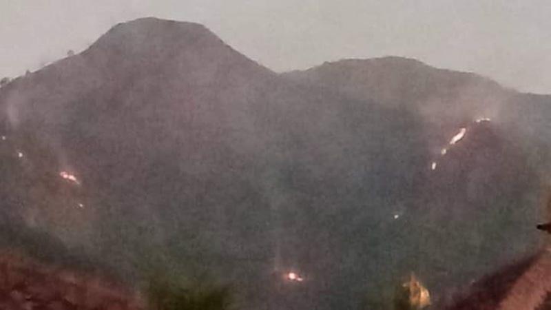 Kebakaran Hutan Gunung Andong, 9 Hektare Lahan di Petak 26E Hangus Dilalap Api